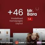 Mr.Bara_