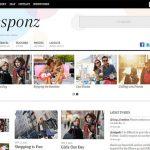 responz wordpress blog teması
